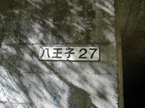 CIMG7254.JPG